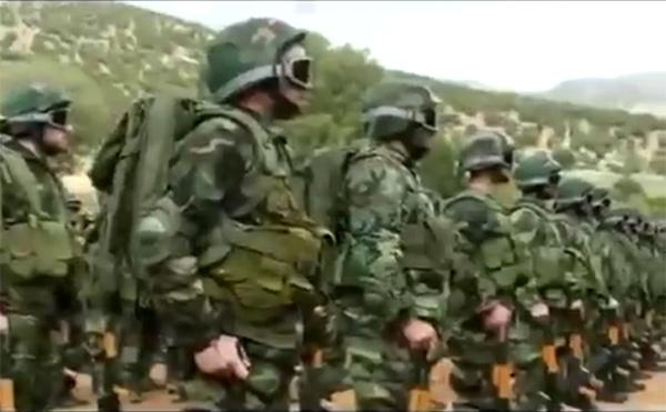 """Война в Сирии: серьезные потери у """"Хезболлы"""" и сокращение потока новобранцев у """"ДАЕШ"""""""